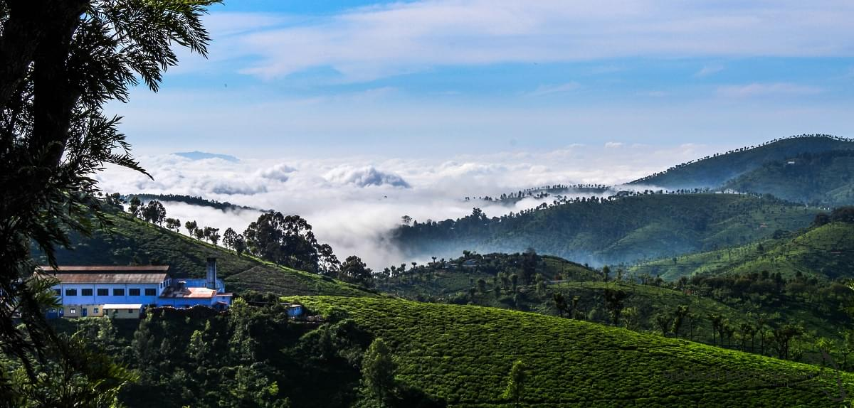 5-Night-6-Days-Mysore,-Ooty-and-Coonoor-Tour-Package-JustWravel-1597395389-3.jpg
