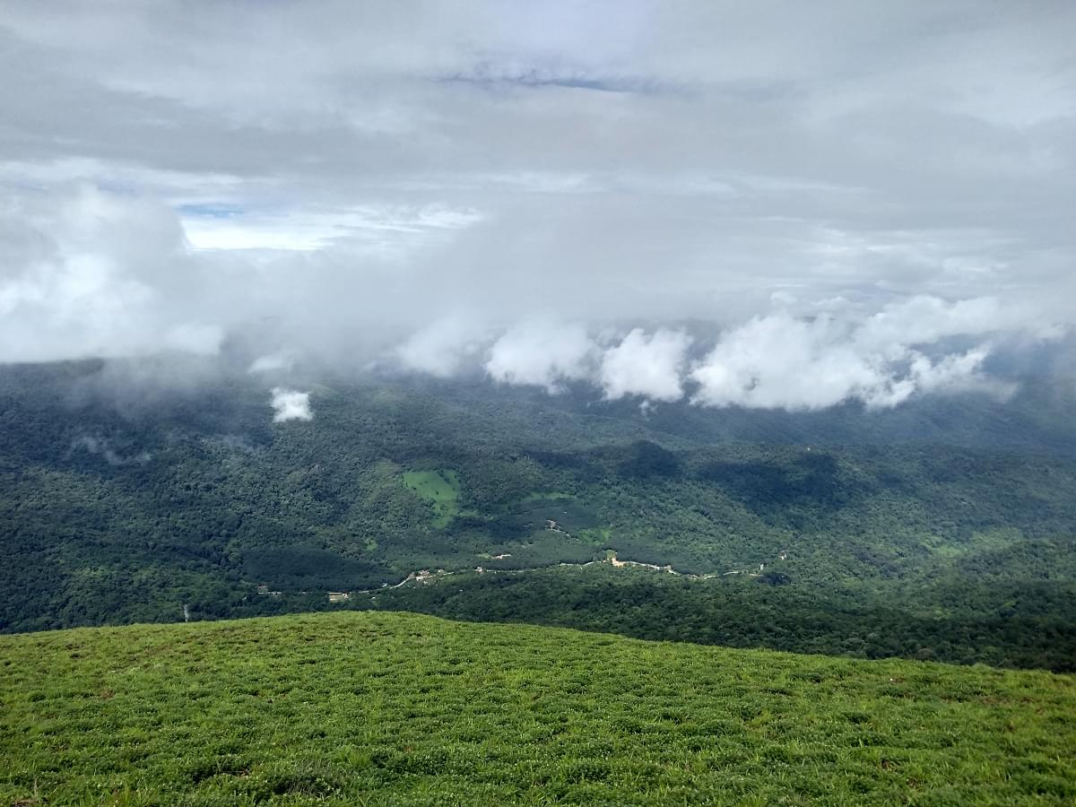 6-Night-7-Days-Coorg,-Ooty,-Mysore-and-Coonoor-Tour-Package-JustWravel-1597395212-3.jpg