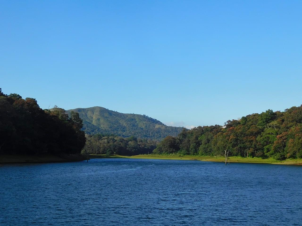 6-Night-7-Days-Tour-package-of-Kerala-with-Vagamon-JustWravel-1597392389-3.jpg