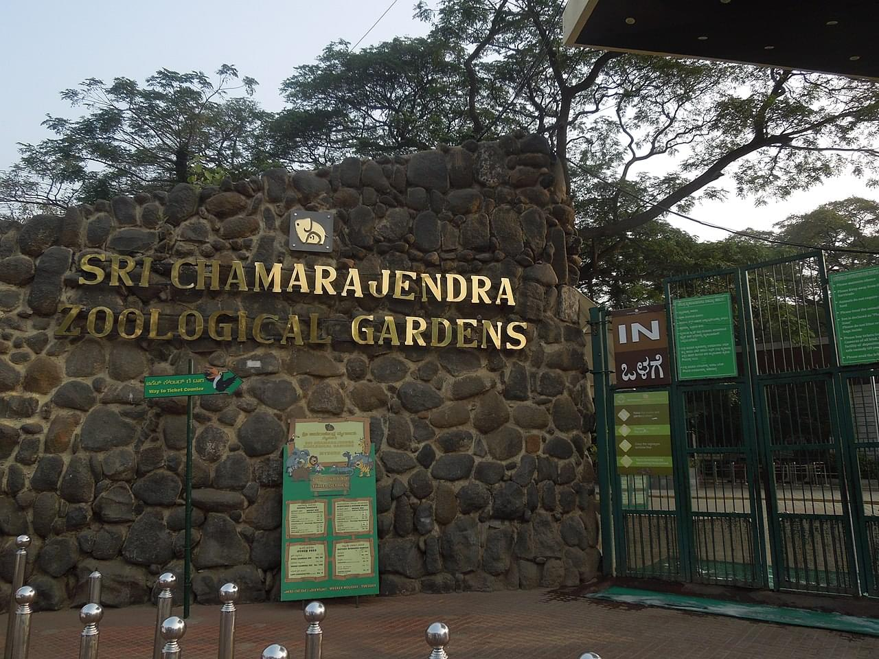 6-Nights-7-Days-Chikmagalur,-Coorg-and-Mysore-Tour-Package-JustWravel-1597395239-6.jpg