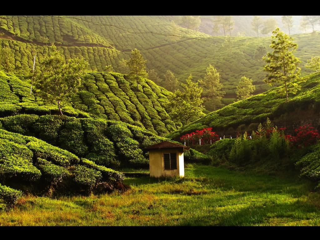 7-Night-8-Days-Kerala-Family-Tour-Package-with-Jatayu-Earth-Centre-JustWravel-1597392428-1.jpg