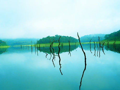 7-Night-8-Days-Kerala-Family-Tour-Package-with-Jatayu-Earth-Centre-JustWravel-1597392428-2.jpg