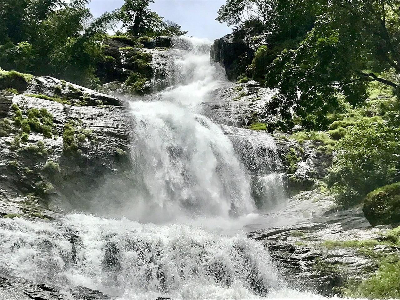 Delighted-Kerala-Tour-Package-with-Athirappilly-Water-Falls-JustWravel-1597392357-5.jpg