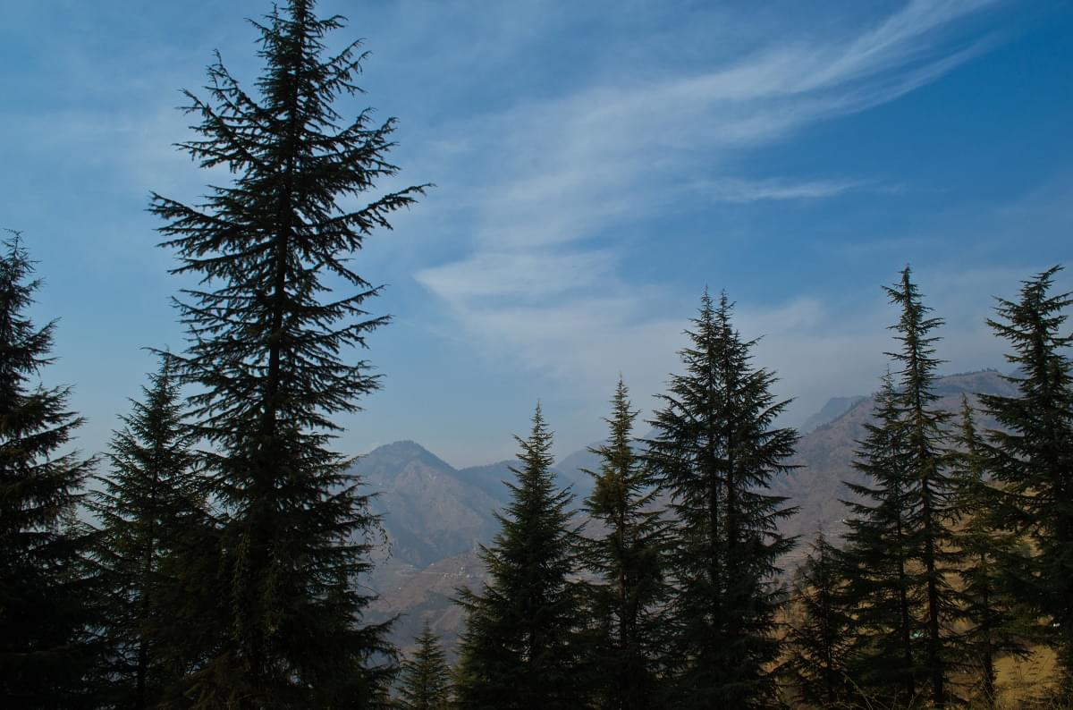 Tirthan-Valley-and-Barot-JustWravel-1597382503-8.jpg