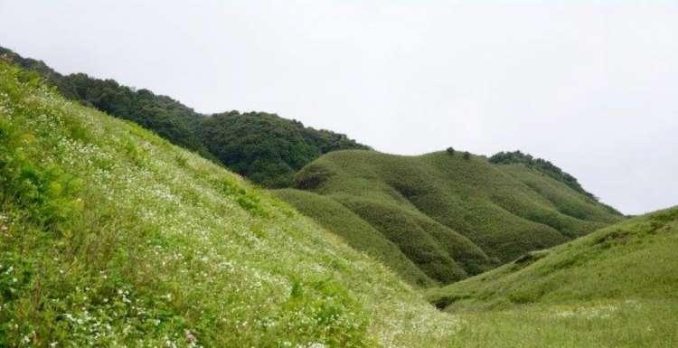 Trekking-to-Dzukou-Valley-and-Japfu-Peak-JustWravel-1597385003-1.jpg