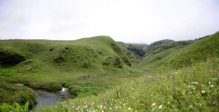Trekking-to-Dzukou-Valley-and-Japfu-Peak-JustWravel-1597385003-2.jpg