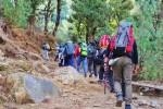 Trek towards Kedarkantha