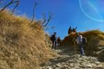 Rocky path towards Nagtibba Base Camp