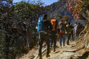 Initial Trail to Bhramatal Trek