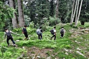 Trail from Parashar Lake to Baggi