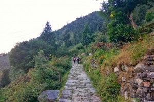 Towards Deoriatal