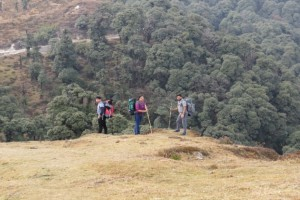 Trail to Sandakphu