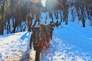 Group towards Kedarkantha Summit