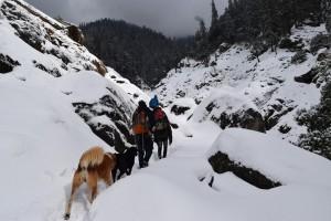 Trail to Kareri Lake