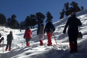 Group going towards summit