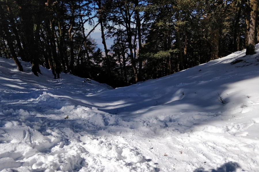snow covered trail to Nagtibba Summit